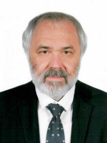 Шевелев Сергей Георгиевич