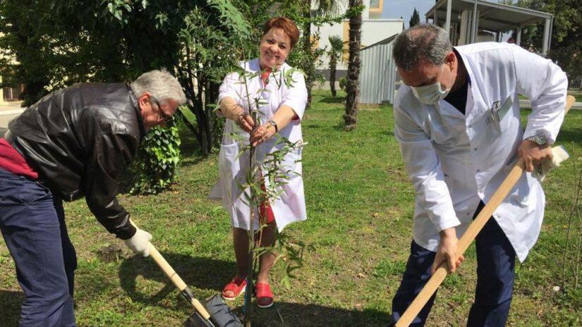 Депутаты Городского Собрания Сочи приняли участие в субботнике